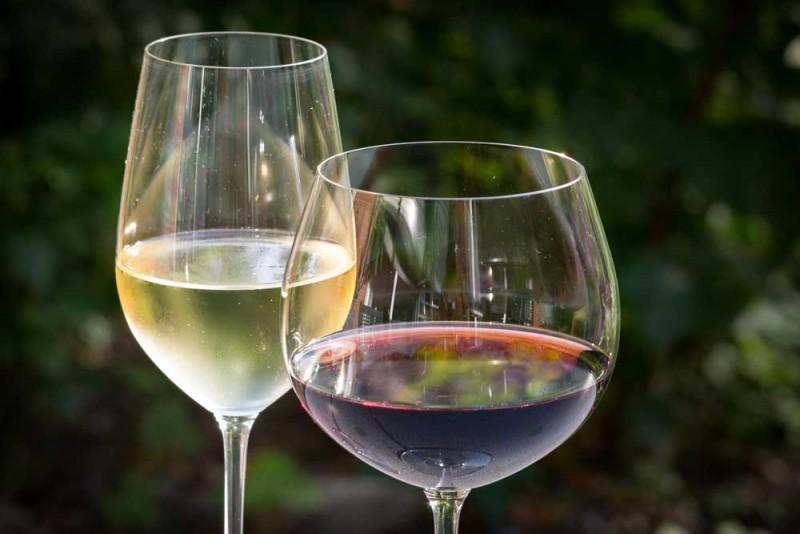 media/image/white-wine-848268_1920.jpg