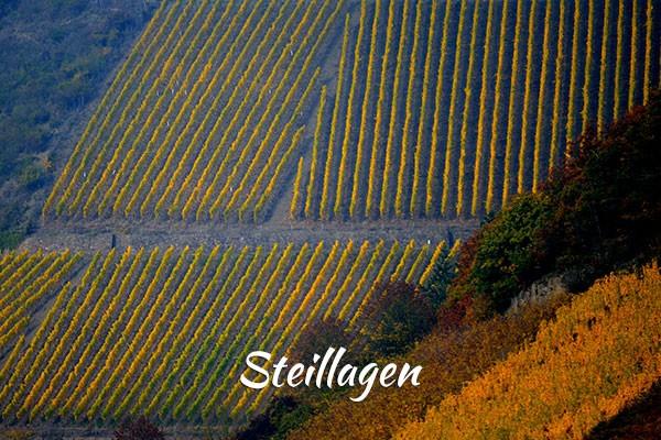 media/image/2016_steillagen.jpg