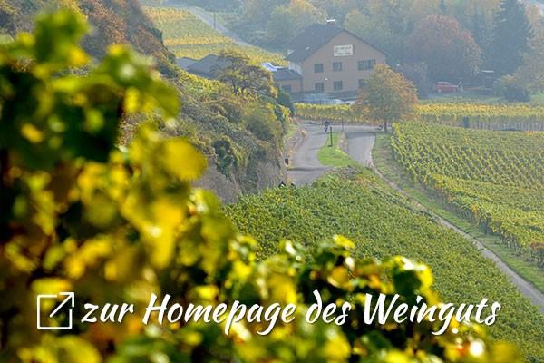 Zur Homepage des Weinguts